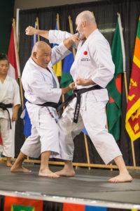 Japan, pavilion, saskatoon, folkfest, karate